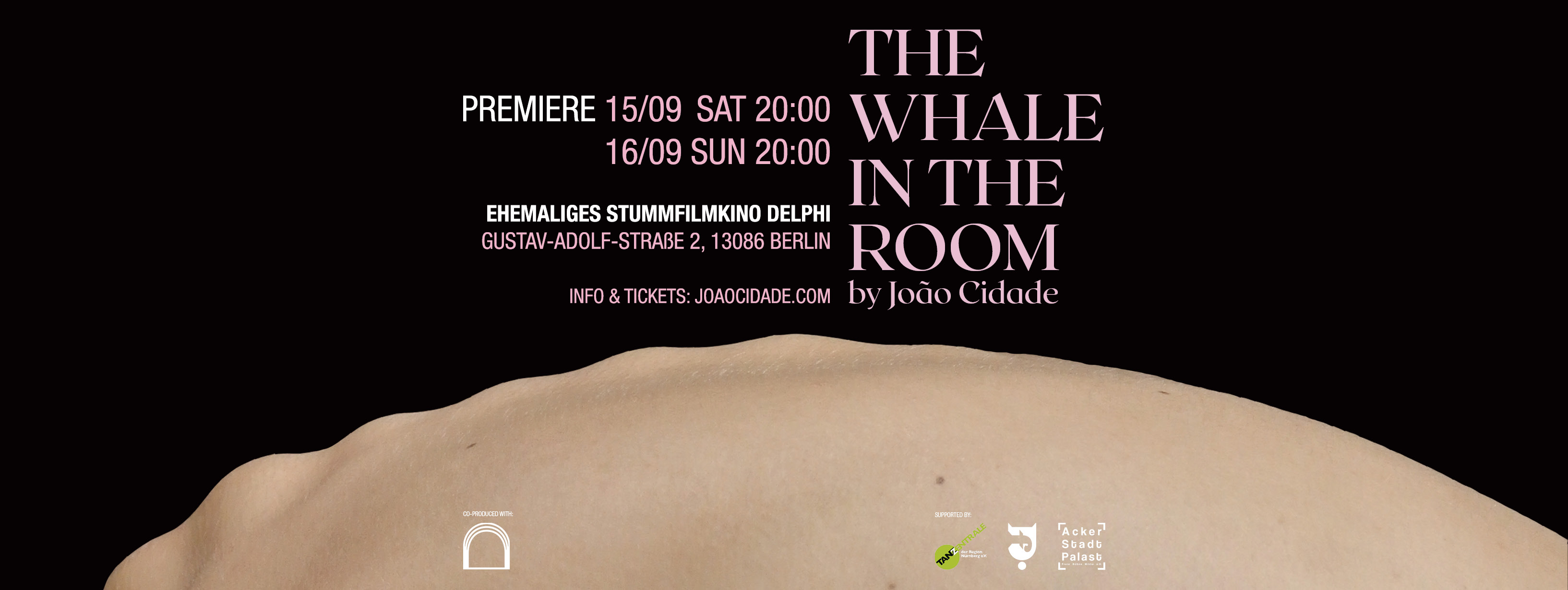The Whale In The Room Banner