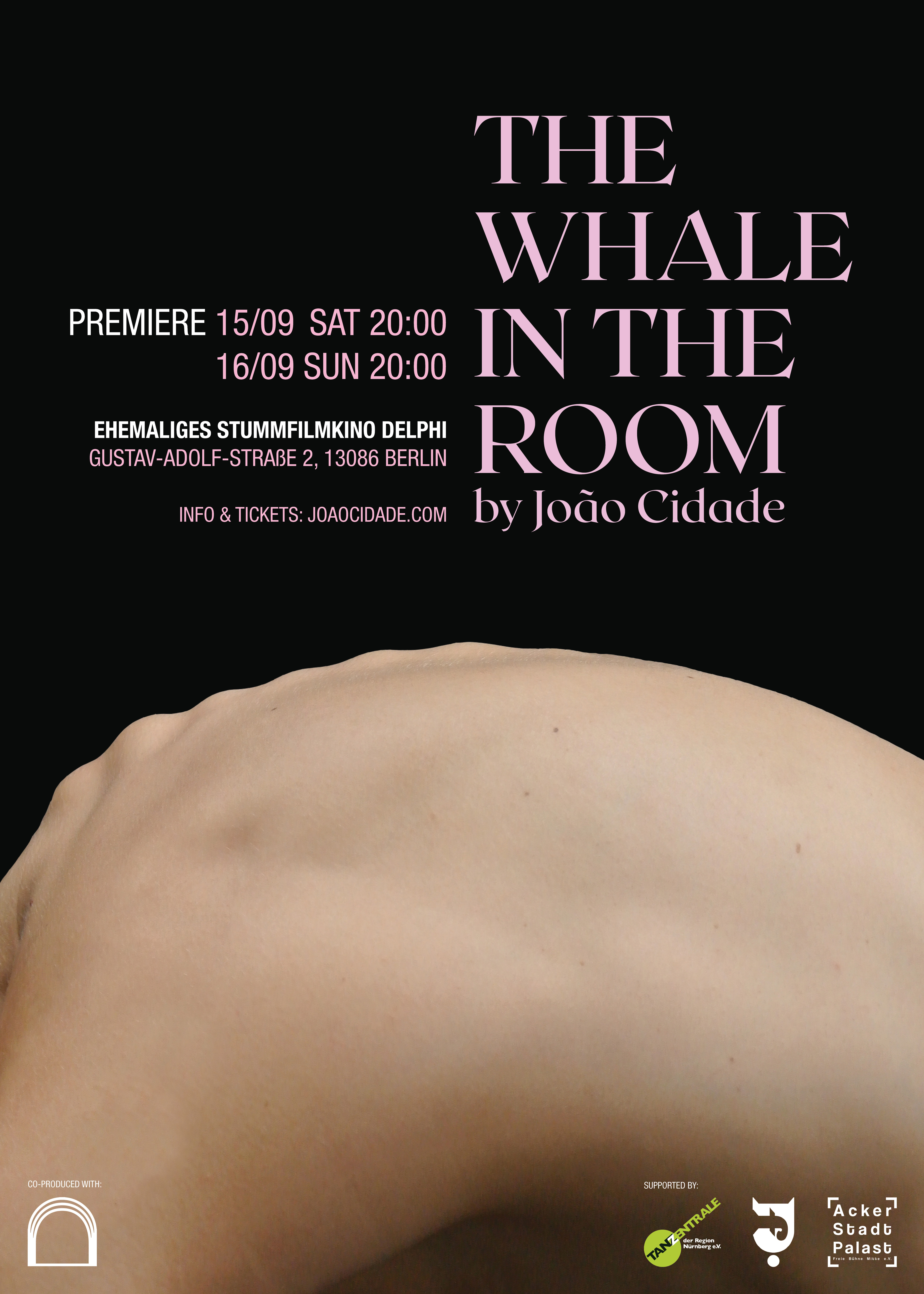 The Whale In The Room Poster Web